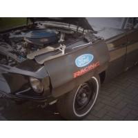 Ford Racing Skärmskydd